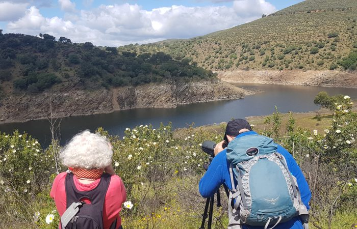 Turistas observando el paisaje con telescopios