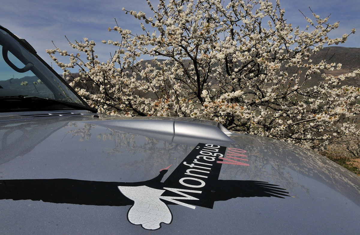 4x4 Monfragüe Vivo junto al cerezo en flor