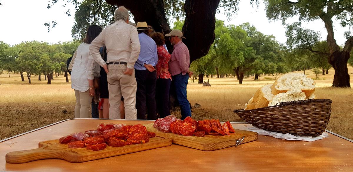 Gente reunida en la Dehesa con tabla de embutidos y pan