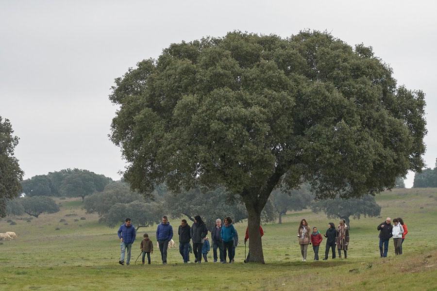 Turistas ruta del jamón