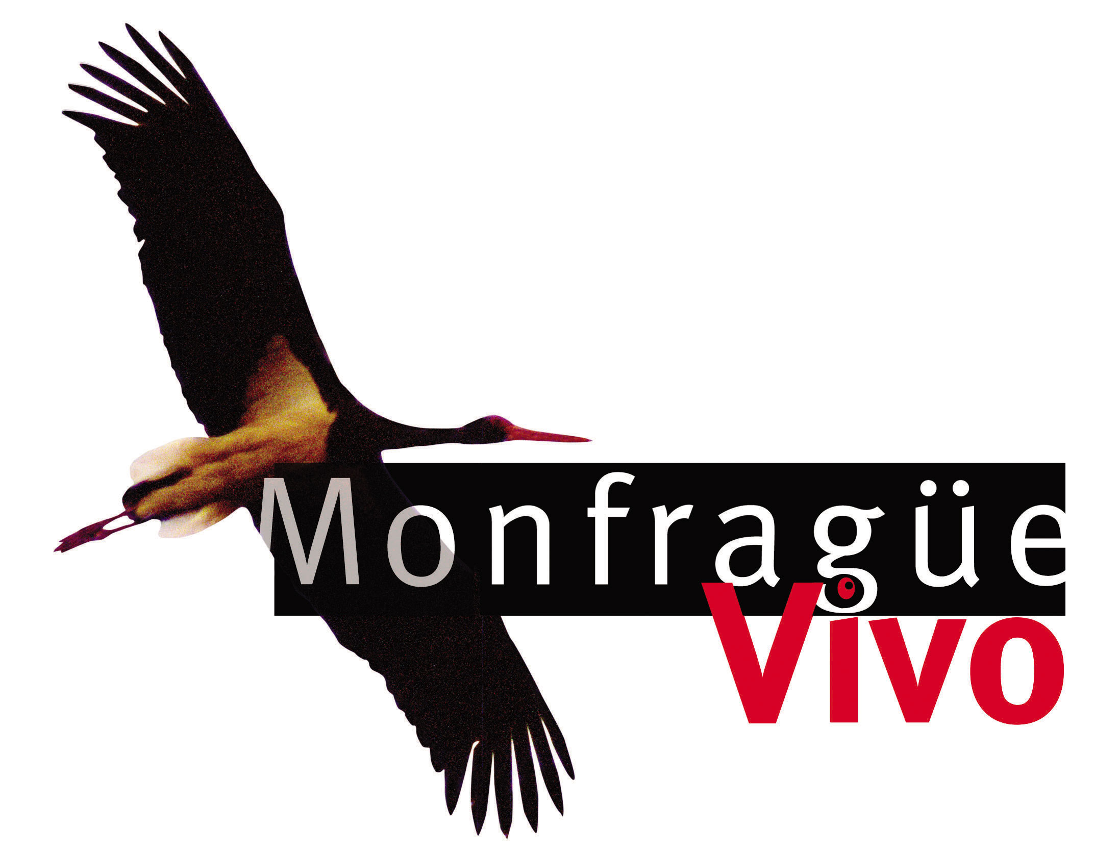 Logo Monfragüe Vivo