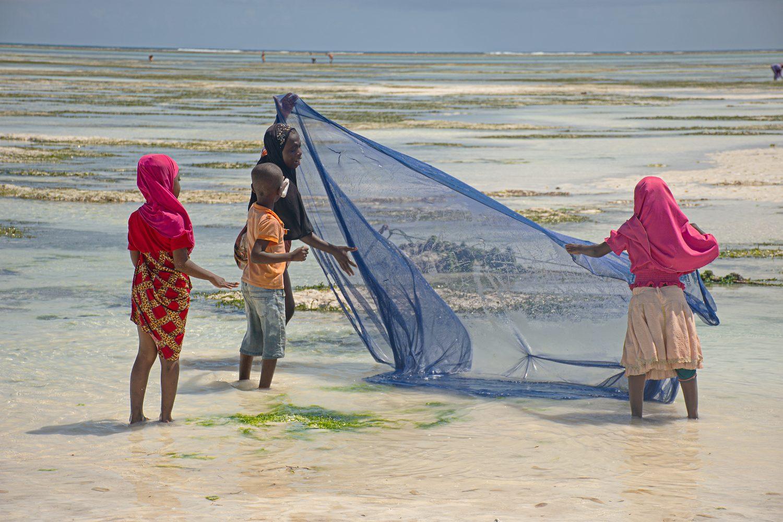 Mujer y niños pescando con red en Zanzabar